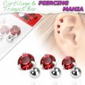 Piercing para Orelha ou Tragus - Ponto de Luz - 6ORE338