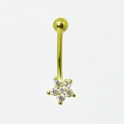 Piercing Rook / Íntimo Dourado Genital - Christina - 18INT10