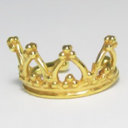 Piercing Fake de Orelha - 6ORE300